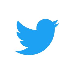 twitter-logo@4x-100